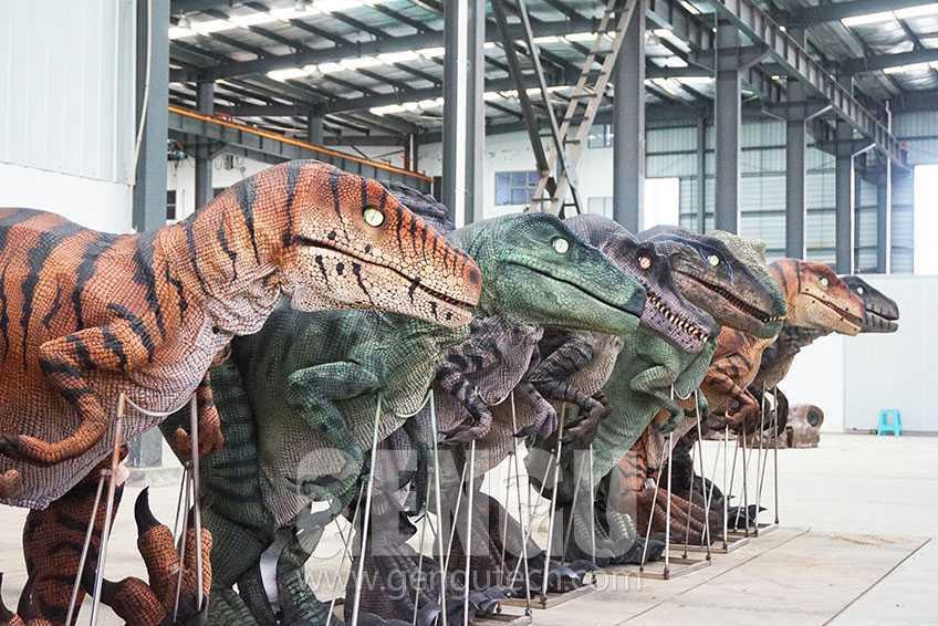 新一代的恐龍衣服