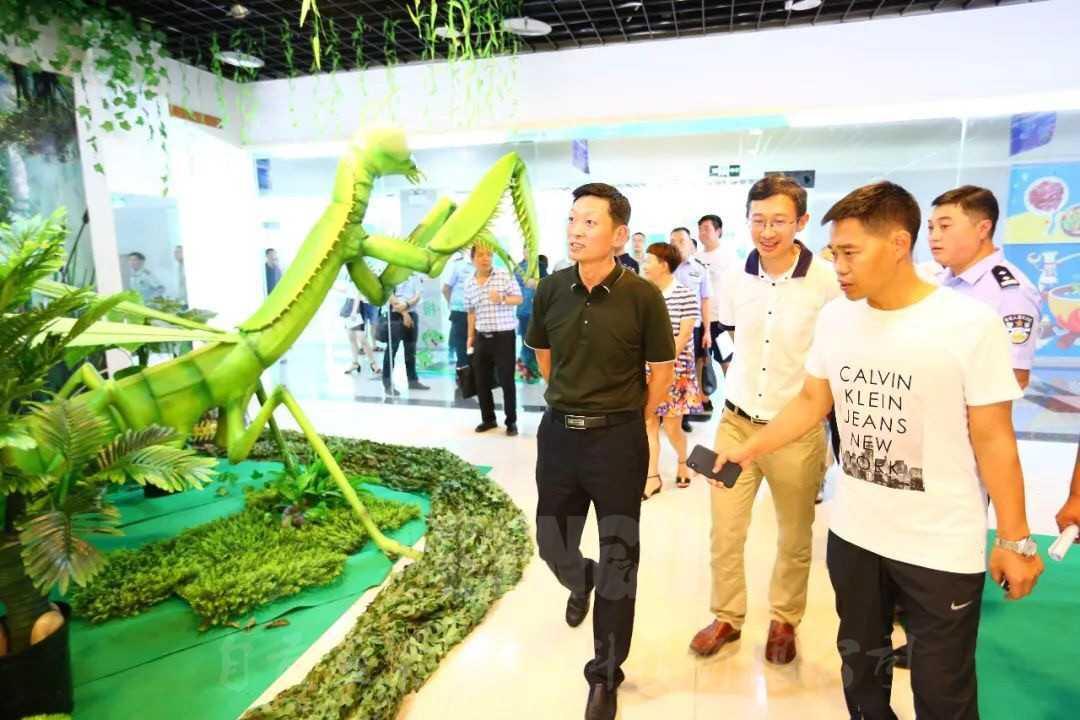 自贡国际凤凰彩票平台网址官网灯光节于8月9日即将魔幻开场
