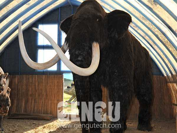 14(Mammoths)