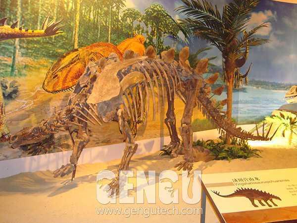 28Yingshanosaurus
