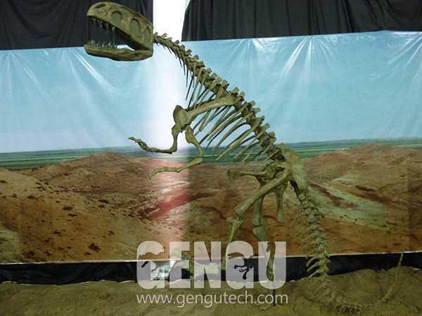 永川龙化石(FP-229)