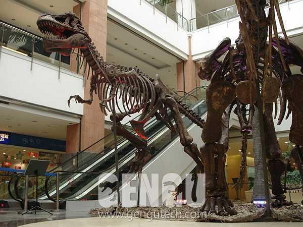 霸王龙化石(FP-255)