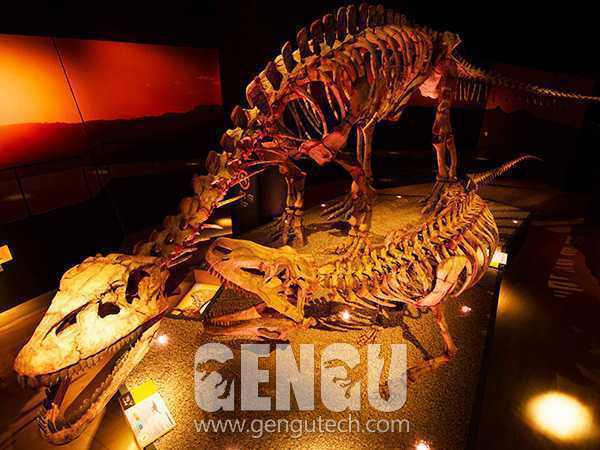 法索拉鳄化石(FP-266)