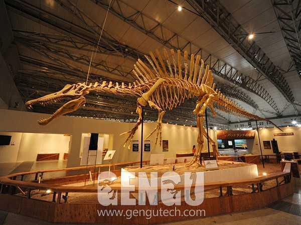 棘龙化石(FP-269)