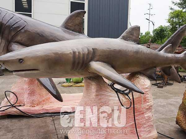 鲨鱼(AA-316)