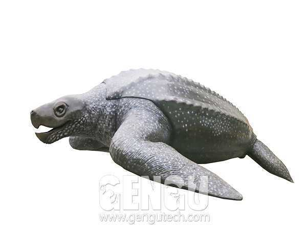 棱皮龟(AA-383)