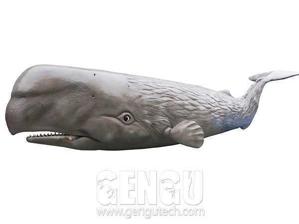 鲸鱼(AA-385)