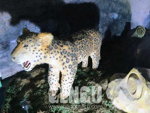 豹(AA-620)