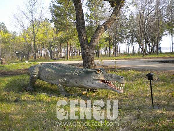 鳄鱼(AA-663)