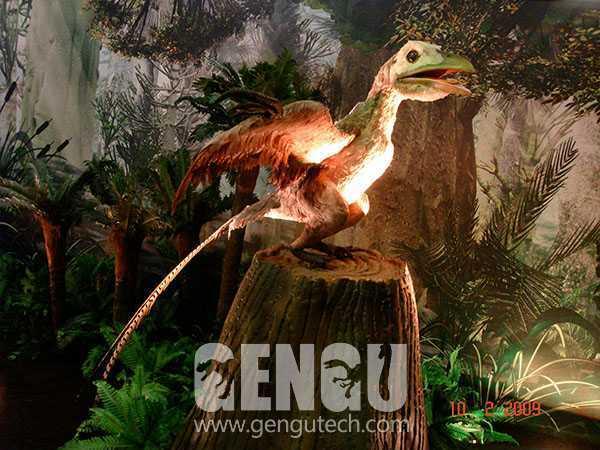 孔子鸟(AD-743)