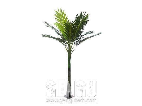 棕榈树(AP-937)