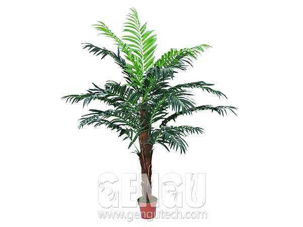 棕樹(AP-938)