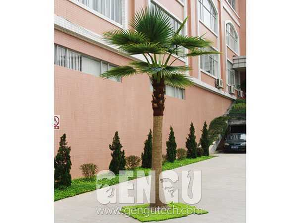 棕櫚樹(AP-943)