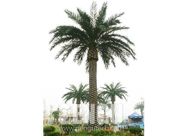棕榈树(AP-944)